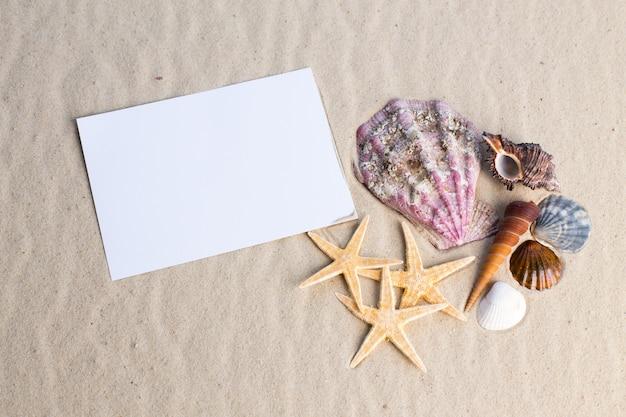 Muscheln, seesterne und eine leere postkarte