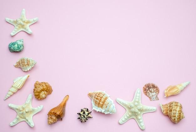 Muscheln und seesterne auf rosa hintergrund. kopieren sie platz für ihren text. sommerferienkonzept
