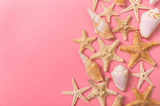 Muscheln und seesterne auf rosa hintergrund und sand. urlaubszeit konzept.