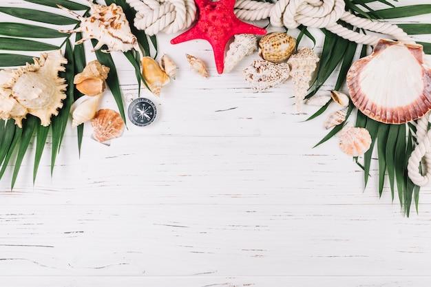 Muscheln und seil auf palmblättern