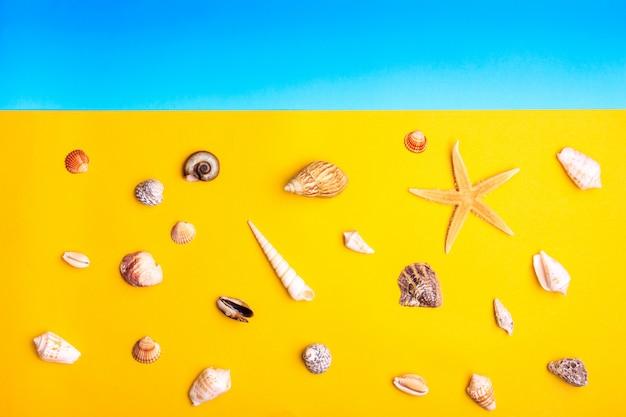 Muscheln und sterne auf gelbem und blauem hintergrund.
