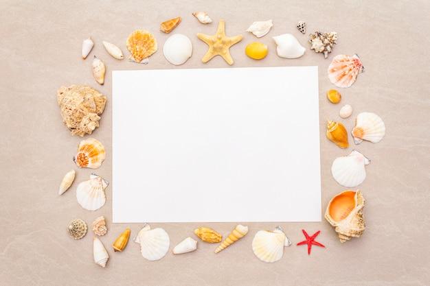 Muschelrahmen und weißer blatthintergrund des leeren papiers. karte, notiz, dokument, draufsicht