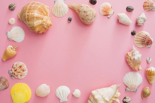 Muschelsymbol von sommerferien auf dem strand auf einem rosa hintergrund.