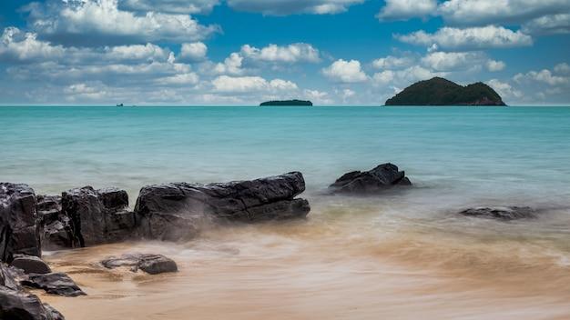 Muschelwelle auf dem felsen am strand