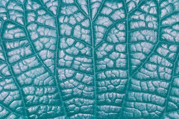 Muster auf blättern in der natur