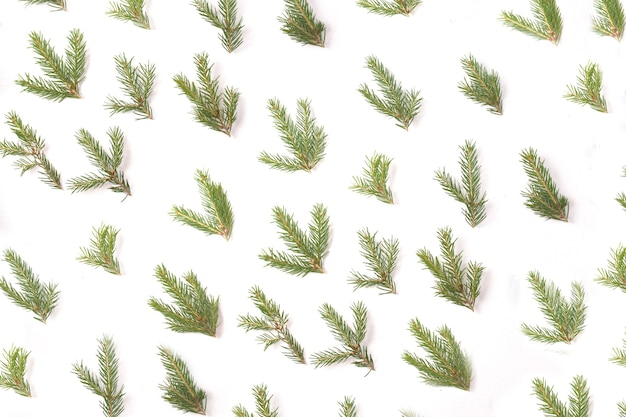 Muster aus kleinen fichtenzweigen auf weißem hintergrund