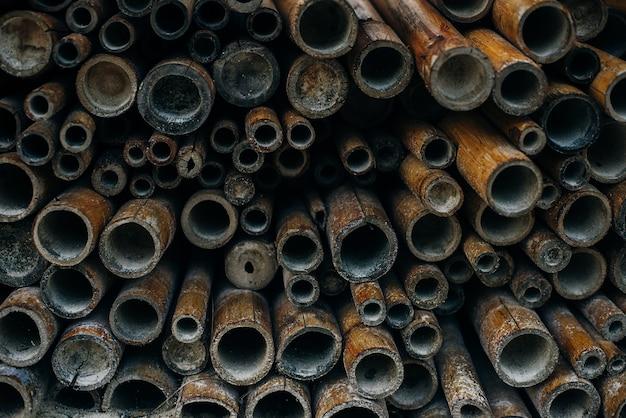 Muster gefalteter bambusstamm geknotet