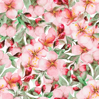 Muster von aquarell-kirschblüte-blumen