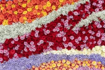 Muster von roten, orange und gelben Rosen.