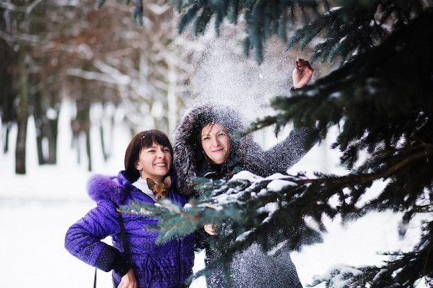 Mutter mit einer tochter und ihrem hund, die im winterpark gehen
