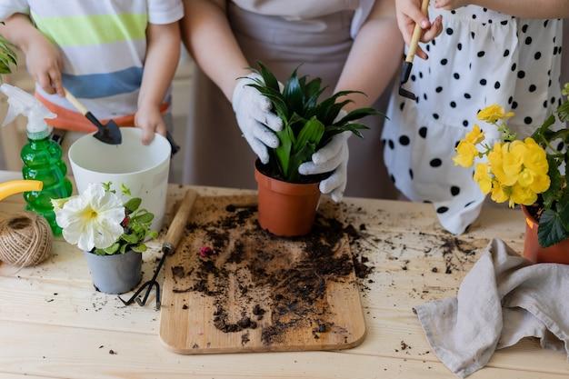 Mutter mit ihrem sohn und ihrer tochter in der fastenpflanze oder verpflanzt innenblumen im garten