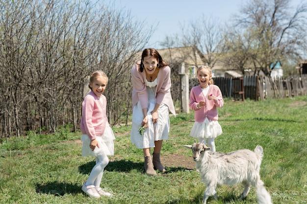 Mutter mit ihren jungen zwillingstöchtern füttert eine ziege auf einer wiese im dorf.