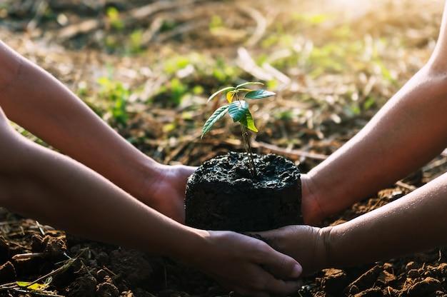 Mutter mit kindern, die helfen, baum in der natur zu pflanzen, um erde zu retten. umwelt-öko-konzept