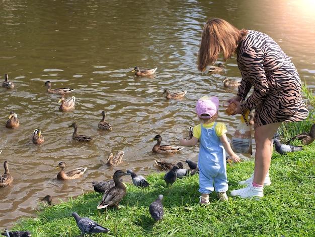 Mutter und kind füttern die vögel am ufer des stadtsees
