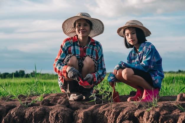 Mutter und kinder pflanzen den baum auf schmutz auf reisfeld und blauem himmelshintergrund