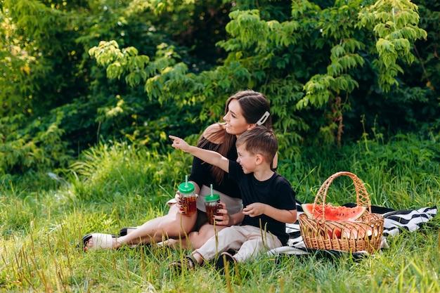 Mutter und sohn beim picknick im park. junge zeigte auf weit weg von