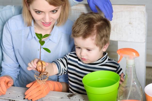 Mutter und sohn pflanzen blumen zu hause gartenarbeit pflanzen mutter mit kleinem gärtnerjungen pflanzen
