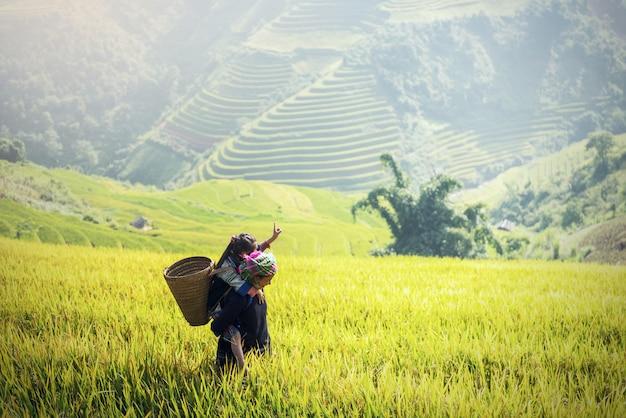 Mutter und tochter hmong, arbeitend an den vietnam-reisfeldern auf terassenförmig angelegtem in der regenzeit