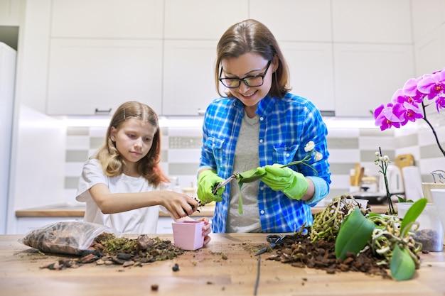 Mutter und tochter kind zusammen in der küche, die phalaenopsis orchideenpflanzen in töpfen pflanzt