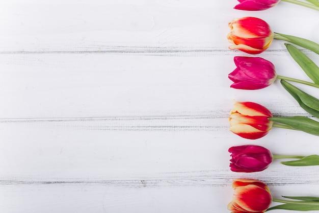 Muttertag. valentinstag. geburtstag. rosa tulpen mit textfreiraum.