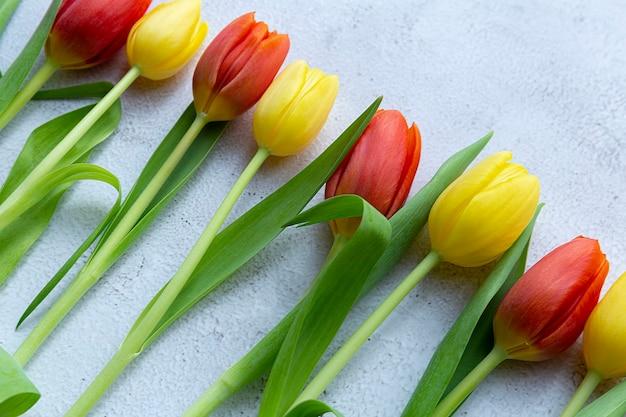 Muttertagsgrußkarte, tulpenblumen, draufsicht, kopienraum