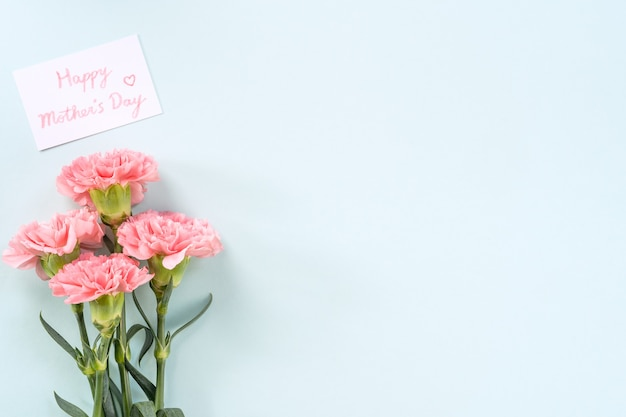 Muttertagshintergrund, nelkenbündel - schöner blassrosa blumenstrauß einzeln auf pastellblauem tisch, draufsicht, flache lage, kopienraumdesign.