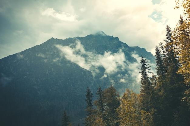 Mysteriöse landschaft der dichte nebel, der auf die mächtigen tatra-berge in der slowakei fällt. schönheit und kraft wilder unberührter natur. idealer hintergrund für märchenillustrationen und collagen.