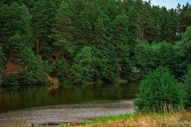 Mysteriöser landschaftssee umgeben von wald