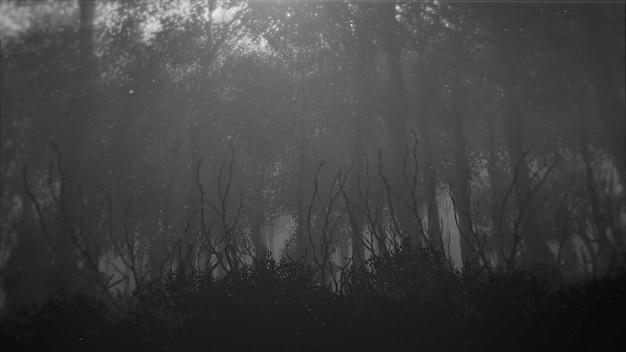 Mystischer horrorhintergrund mit dunklem wald und nebel, abstrakter hintergrund. luxuriöse und elegante 3d-illustration des horror- und halloween-themas
