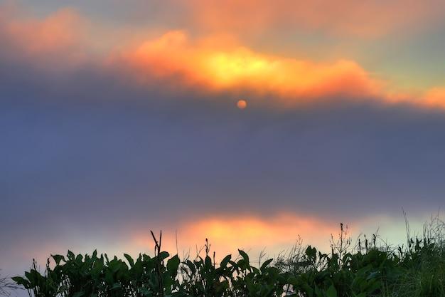 Mystischer sonnenaufgang am frühen morgen über dem wasser im sommer