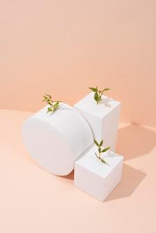 Nachhaltigkeitskonzept mit leeren geometrischen formen und wachsender pflanze