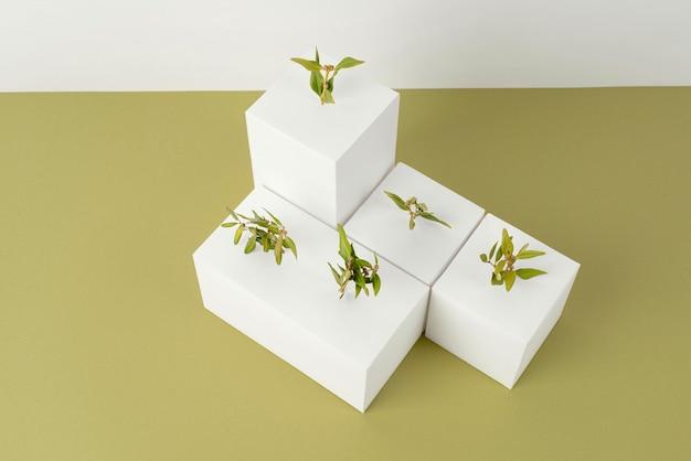 Nachhaltigkeitskonzept mit pflanzen, die aus leeren geometrischen formen wachsen