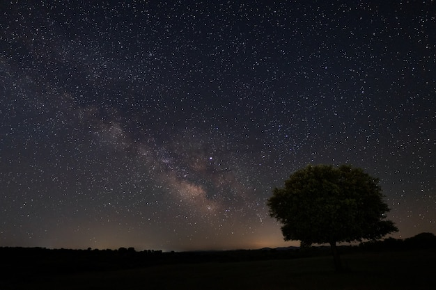 Nachtlandschaft mit milchstraße in der nähe von malpartida de caceres. extremadura. spanien.