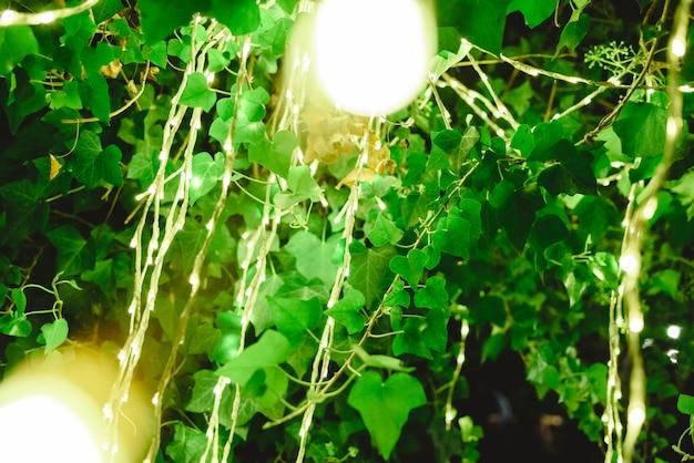 Nachts schmücken led-leuchten einen baum, um beim abendessen eine romantische atmosphäre zu schaffen.