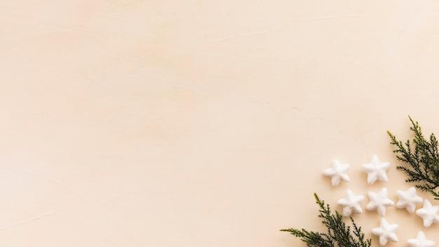 Nadelzweige und ornamentsterne