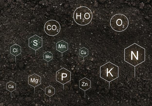 Nährstoffe im leben von pflanzen im boden gefunden.