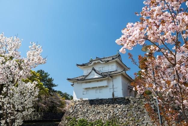 Nagoya-schloss mit rosa kirschblüte im frühjahr