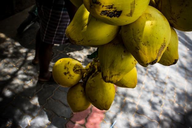 Nah oben gepflückt haufen kokosnüsse