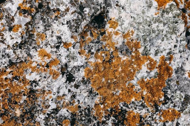 Nah-u eines steins mit flechtenbeschaffenheitshintergrund.