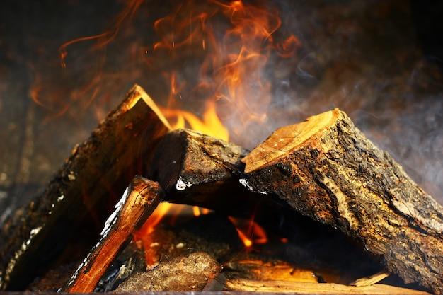 Nahaufnahme auf einem brennenden wald.