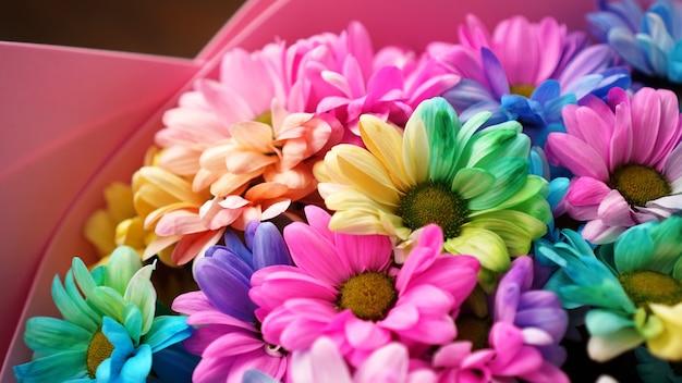 Nahaufnahme der blüte regenbogenblumen heller strauß