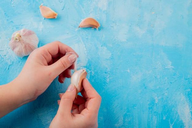 Nahaufnahme der frauenhand, die knoblauchzehe mit knoblauchknolle auf blauem hintergrund mit kopienraum schält