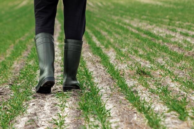 Nahaufnahme der hände, der hacke und des feldes des landwirts im frühjahr