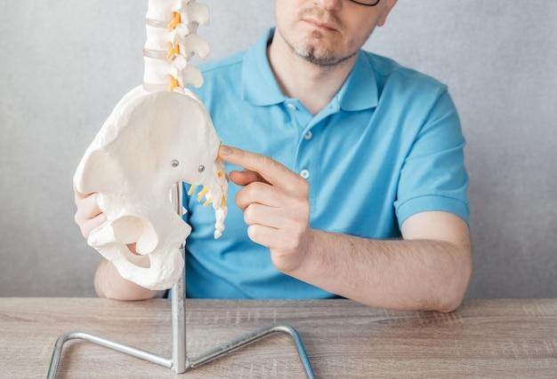 Nahaufnahme der hand des männlichen arztes, die auf asis der vorderen oberen beckenwirbelsäule auf einem skelettwirbelsäulenmodell zeigt