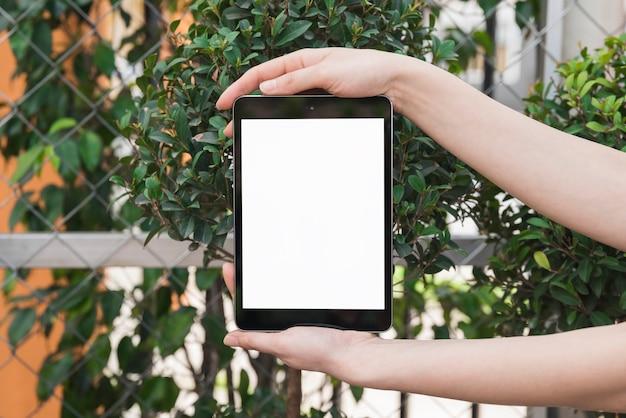 Nahaufnahme der hand einer frau, die digitale tablette mit leerem weißem bildschirm hält