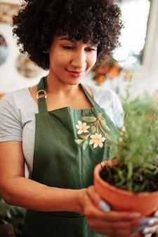 Nahaufnahme der hand einer frau, die topfpflanze hält
