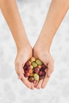 Nahaufnahme der hand einer person, die himbeeren und trauben zeigt