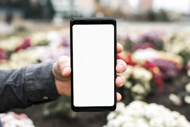 Nahaufnahme der hand einer person, die neues intelligentes telefon mit weißer bildschirmanzeige im garten zeigt