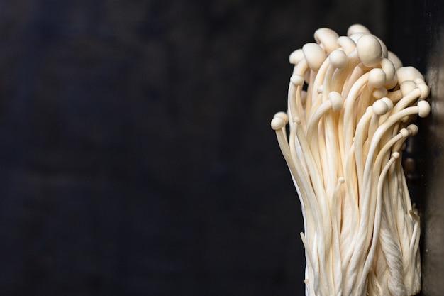 Nahaufnahme der japanischen enoki-pilze mit kopienraum
