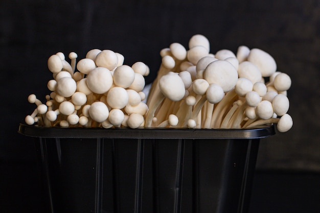 Nahaufnahme der japanischen enoki-pilze